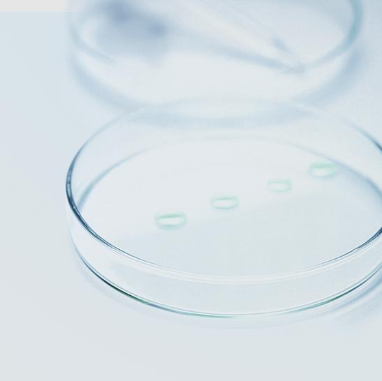 Der DMS-Dampf gegen Bakterien